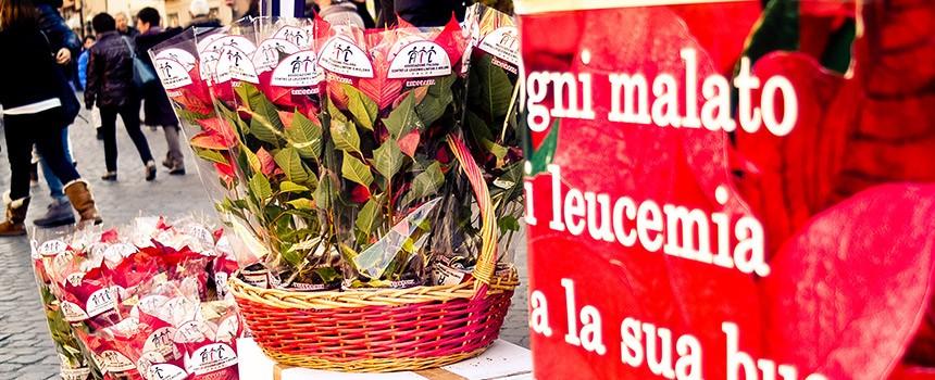 Stella Di Natale Piazze Italiane.Una Stella Di Natale Per Aiutare La Ricerca Dell