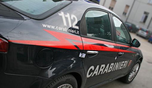 I gemelli della droga finiscono in manette a Rivalta, mentre a Bosconero un'auto conduce a una serra casalinga di marijuana [VIDEO]