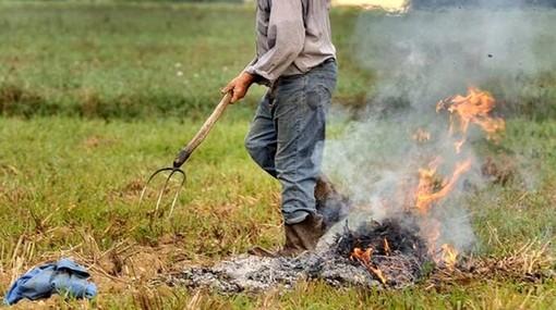 """Abbruciamenti in bosco, Uncem: """"Bene le modifiche depositate in Consiglio regionale"""""""
