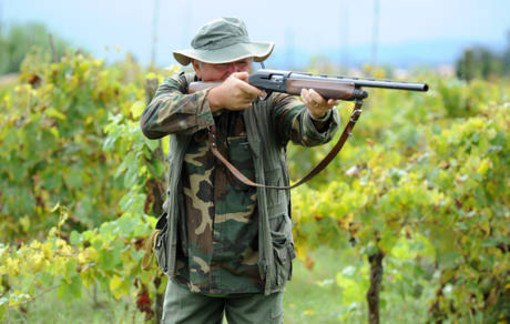 """Caccia, Bertola (M5S): """"Proprietari e conduttori non possono bandire i cacciatori dai propri fondi"""""""