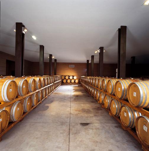 """Coldiretti–dazi Trump: """"Scade l'ultimatum, vino Made in Piemonte non deve farne le spese"""""""