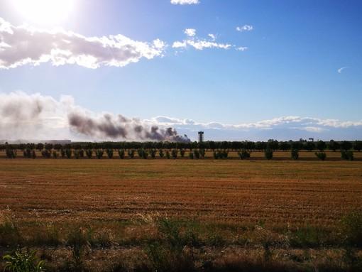 Task force degli enti locali e del sistema-montagna contro gli incendi boschivi