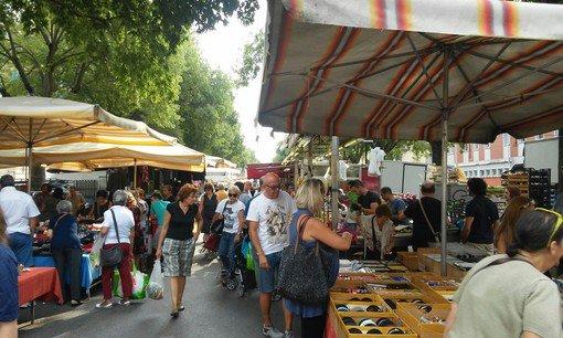 Copertura, e-commerce e fotovoltaico: ecco come cambia il mercato di Santa Rita