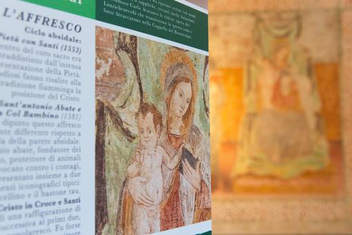 Full immersion fra arte, storia e mostre con i Sentieri dei Frescanti