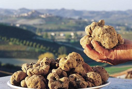 A Torino dal 27 al 30 ottobre arriva BUONISSIMA, che intreccia gastronomia, cultura e creatività