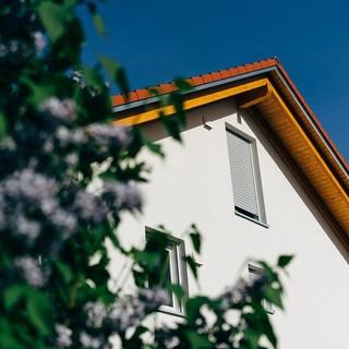 tetto di una casa che sbuca tra gli alberi