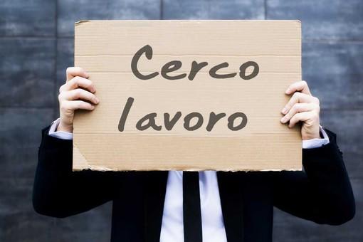 Reddito di cittadinanza, in un anno in Piemonte stipulati 1.936 contratti a tempo indeterminato