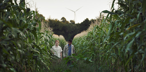 CinemAmbiente in sala e online: 89 film per raccontare la transizione ecologica