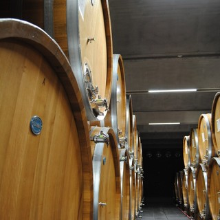 Alla cantina Terre del Barolo un ricco autunno tra vendemmia, fine lavori nei nuovi locali e la novità dello spumante metodo Classico Extra Brut Blanc De Blancs