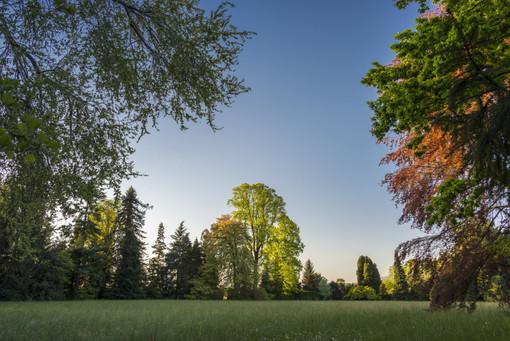 """""""Bellezza tra le righe"""": dal 25 luglio i parchi di Casa Lajolo e Castello di Miradolo si mettono in luce"""