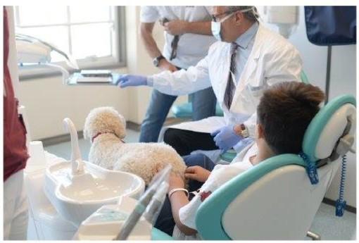 All'ospedale Martini di Torino arriva la Dog Therapy