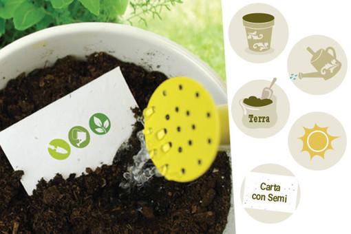 Pianta la Tua Carta con Semi: iGreen, il progetto che aiuta l'ambiente!