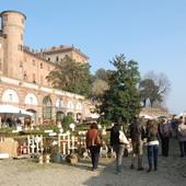 castello reale moncalieri