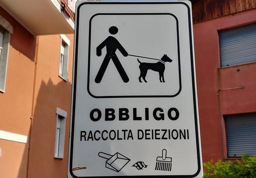 Cartello stradale indica l'obbligo di raccolta delle deiezioni canine