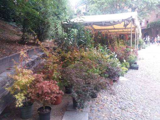 """Il Borgo si colora di autunno, Peyron: """"Il giardino medievale esempio di floricoltura sostenibile"""""""