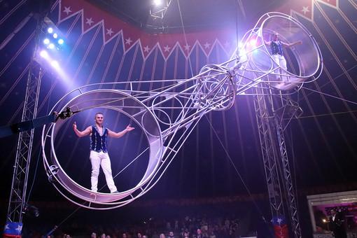 """Togni, il cognome che vuol dire """"circo"""" a Torino dal 16 novembre al 16 dicembre"""
