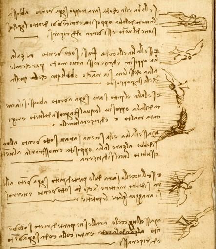 Genialità e universalità di Leonardo da Vinci tra arte, scienza e collezionismo