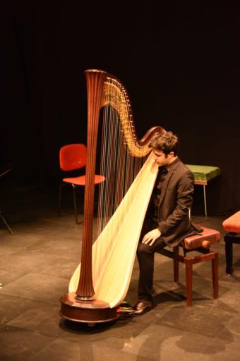 Villa della Regina, una cornice da favola, accompagnata dalle note dell'arpa