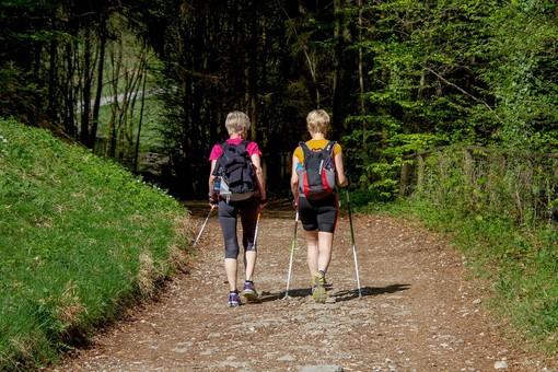 Test, convegni e una camminata al Parco della Mandria per combattere il diabete