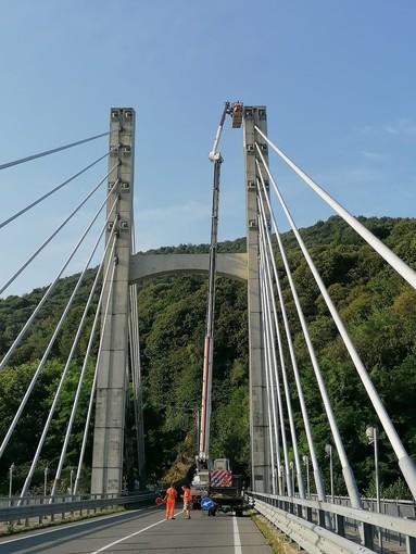 Nuova illuminazione per il ponte strallato sul Sangone