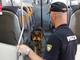 """""""Summer clean station"""", controlli  straordinari nelle stazioni: a Porta Nuova, 2 arrestati e 740 identificati"""
