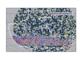 Il bagliore dei raggi gamma che fa luce sulla materia oscura