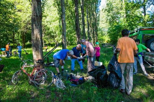 Persone che puliscono una zona di bosco