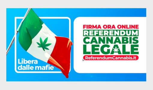 Referendum Cannabis: Justmary è partner di Megliolegale nella raccolta firme