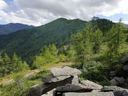 I boschi di Rorà
