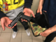 Ruba una moto e cerca di venderla online, minorenne (trovato in possesso anche di una pistola a salve) denunciato dalla Polizia