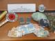 Giro di vite contro lo spaccio di droga: i poliziotti sequestrano mezzo chilo di marijuana