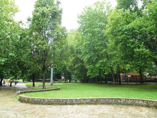 """Refrigerio all'ombra degli alberi: ecco """"Torino Fresh"""", la mappa gratuita sui luoghi freschi della città"""