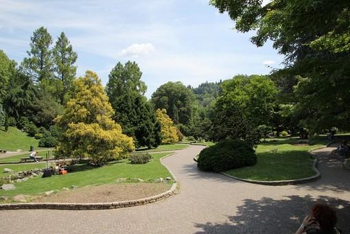 una immagine del parco del Valentino