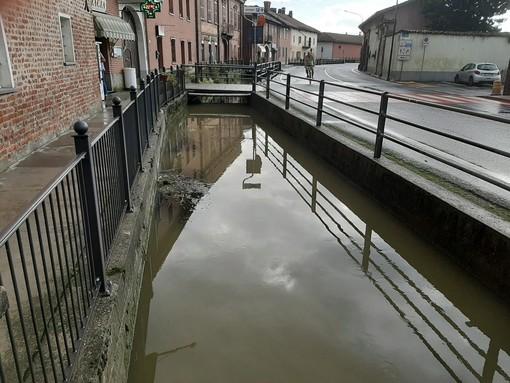 Pesci morti a Virle Piemonte: «Voglio andare fino in fondo»