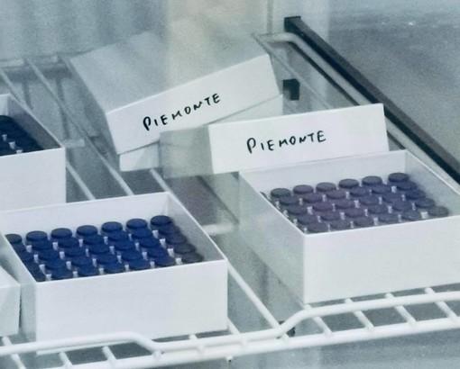 vaccino pzifer - foto di repertorio