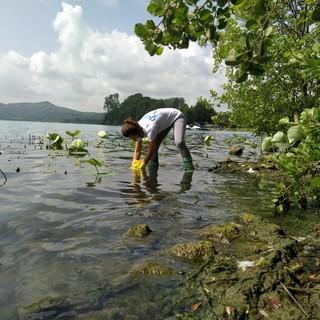 Inquinati 16 dei 24 punti monitorati da Goletta verde nei laghi del Piemonte