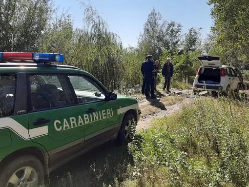 """Cane """"giustiziato"""" a Vigone con un fucile nei boschi di Santa Maria (FOTO)"""