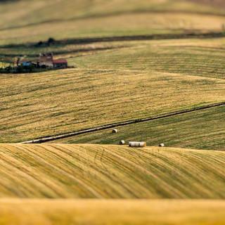 Psr Piemonte: erogati altri 9 milioni di euro di contributi a 900 aziende agricole piemontesi