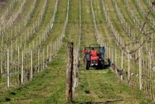 Piemonte e Valle d'Aosta verso una nuova collaborazione in Agricoltura