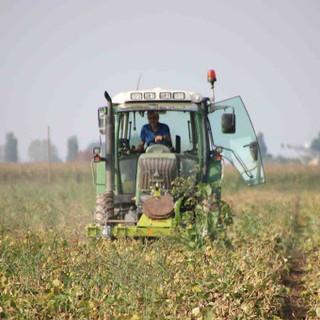 Il 17 maggio apre il bando regionale per la sistemazione temporanea dei lavoratori delle aziende agricole piemontesi