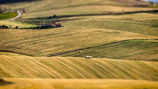 """Coldiretti Piemonte, giornata desertificazione:""""Servono interventi strutturali per preservare suolo"""""""