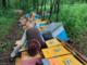 """Milioni di api morte e tutte le casette distrutte: """"Ho male al cuore"""". Una raccolta fondi per aiutare Mattia, apicoltore di Cuneo [VIDEO]"""