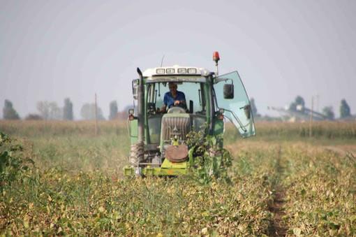 Dalla Regione contributi ai Comuni piemontesi per le struttura che ospitano i lavoratori stagionali nelle aziende agricole