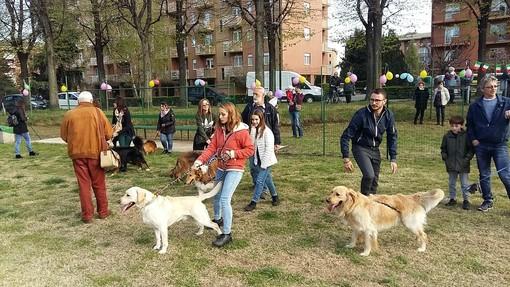 A Torino riaprono le aree cani: mascherina e distanza di 2 metri obbligatoria