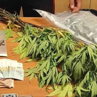 Quattro arresti a Torino e Caselle per detenzione di droga: sorpresi due corrieri di amnèsia [VIDEO]