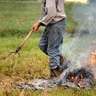 Da oggi in Piemonte scatta il divieto di bruciare materiale vegetale