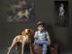 In vacanza con il proprio cane: consigli e regole per viaggiare in sicurezza