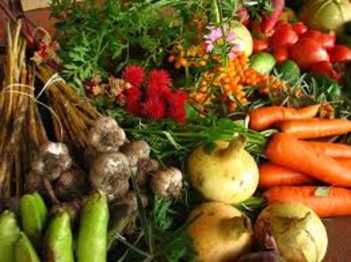 Atlante del cibo 2020, quattro incontri online per ripensare il sistema alimentare dopo il lockdown
