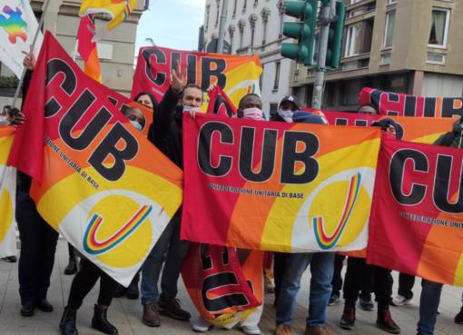 bandiere Cub