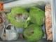 Controlli a San Salvario: sequestrati 200 chili di cibo mal conservato, multe per 63 mila euro
